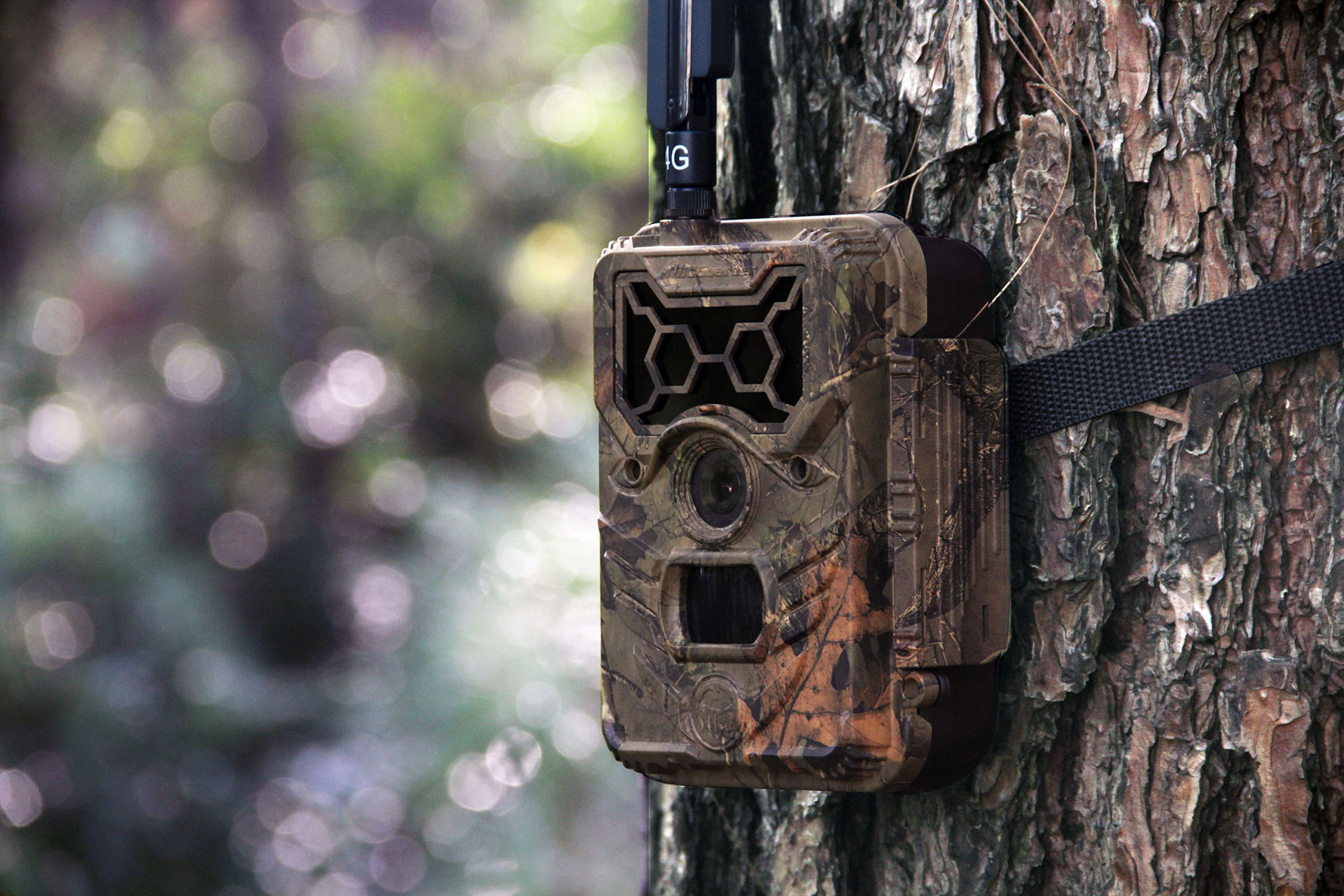 4G hunting video camera Watcher1-4G 1